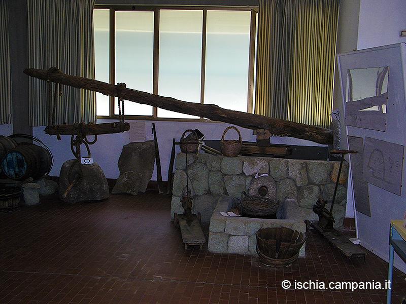 Il Museo contadino della D'Ambra Vini