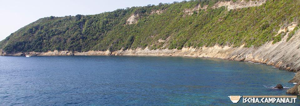 Vivara, il piccolo gioiello dell'arcipelago flegreo