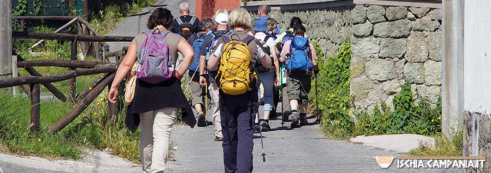 Le 5 passeggiate più belle da fare a Ischia