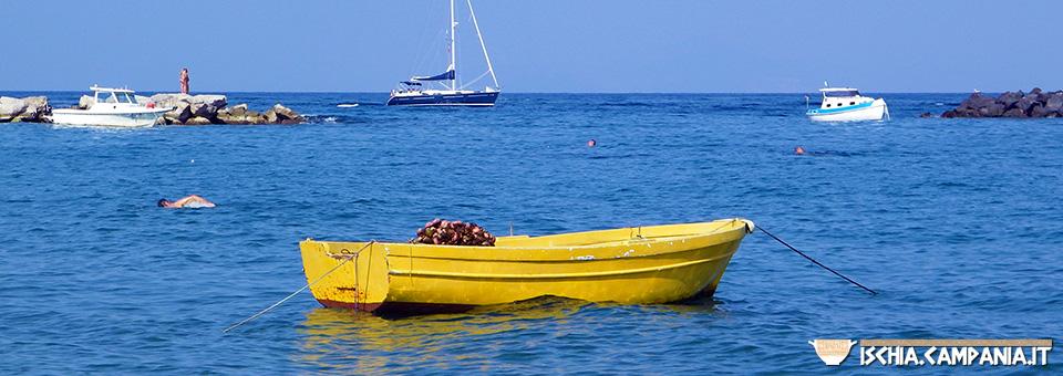 Storie di mare dell'isola d'Ischia