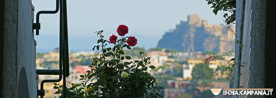 Ischia, island in the sun