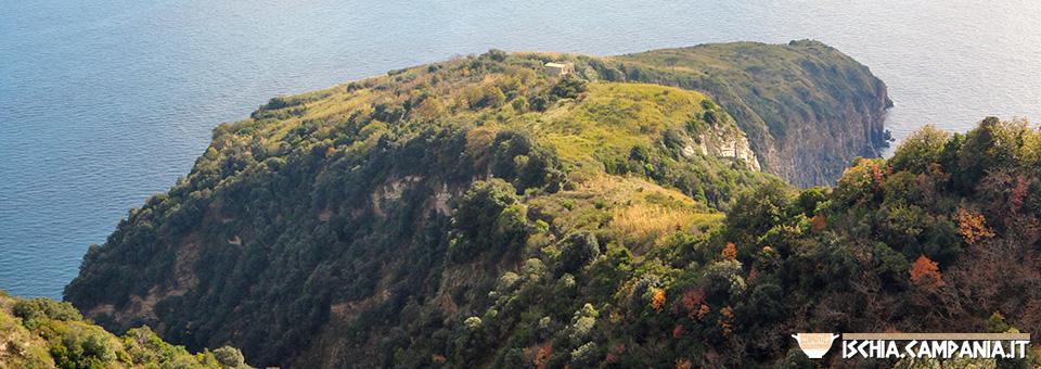 Speciale Ischia: la grande natura dell'isola