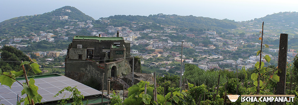 Ischia che non t'aspetti: il borgo del Ciglio a Serrara Fontana