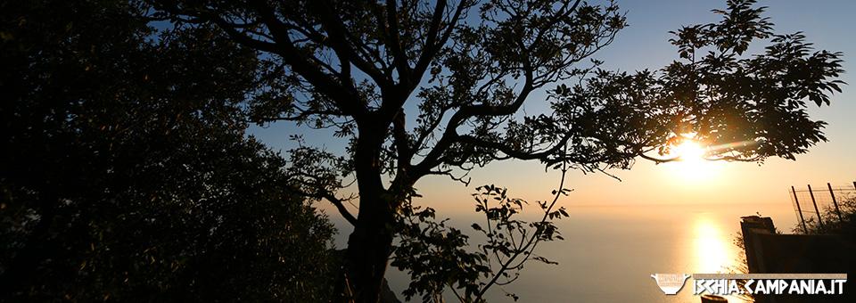 La magia del tramonto dal Monte Epomeo