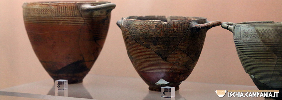 Visita guidata al Museo archeologico di Pithecusae