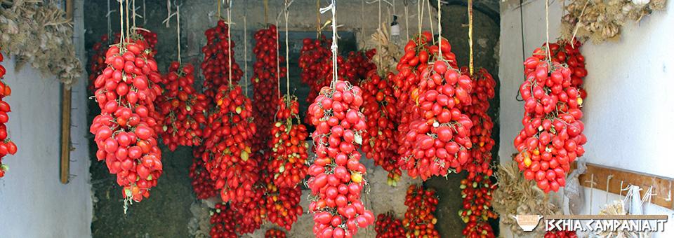 "I pomodorini ischitani. L'arte del ""piennolo"" sull'isola d'Ischia"