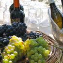 La Festa di San Martino a Ischia